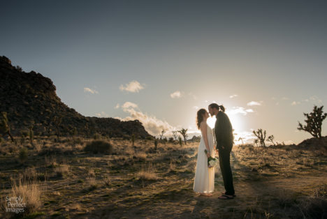 How to Have an Epic Elopement in Joshua Tree